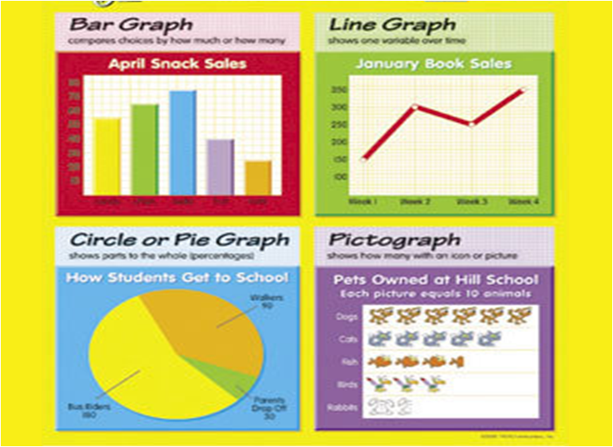 Circle graph worksheets grade 8